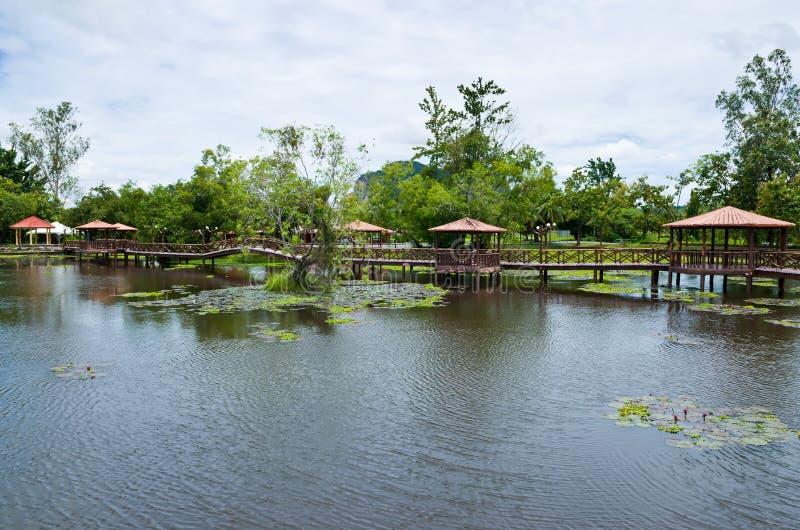 Taman Rekreasi Tasik Melati, Perlis, Malaysia fotografering för bildbyråer