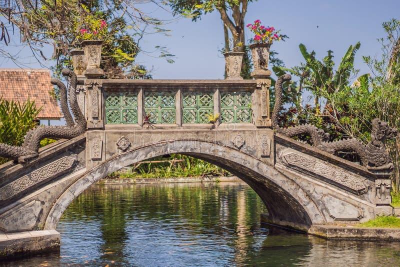 Taman Tirtagangga, palazzo dell'acqua, parco dell'acqua, Bali, Indonesia fotografie stock libere da diritti