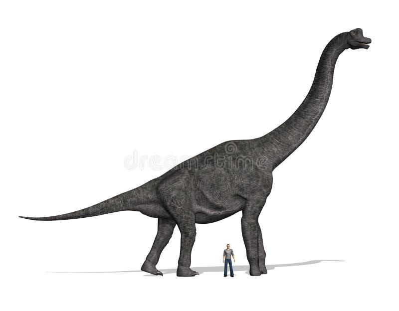 Tamanho de Brachiosaurus comparado ao homem ilustração do vetor