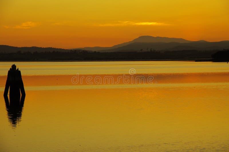Tamar rzeka zdjęcie royalty free