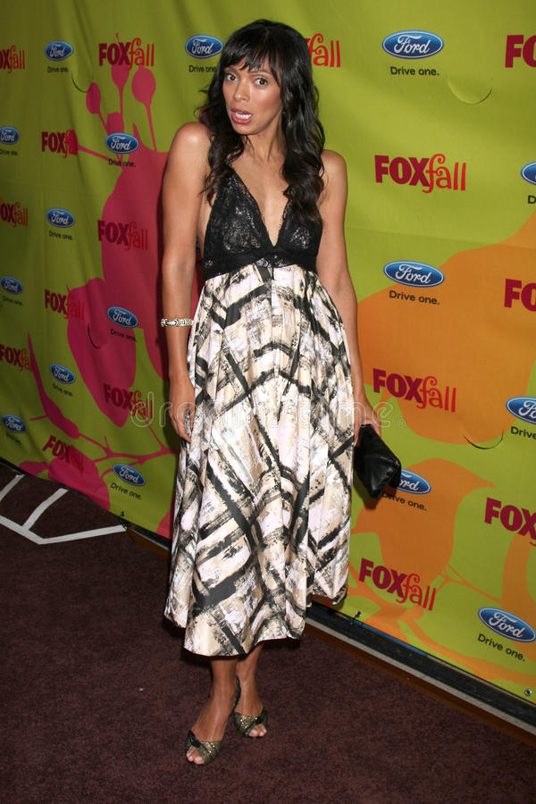 Tamara Taylor. Arriving at the FOX-Fall Eco-Casino Party at BOA Steakhouse in West Los Angeles, CA on September 14, 2009 royalty free stock photos