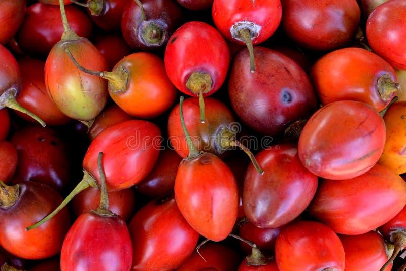 Tamarillo em um mercado - tomate do fruto fresco de árvore - tomate de arbol foto de stock