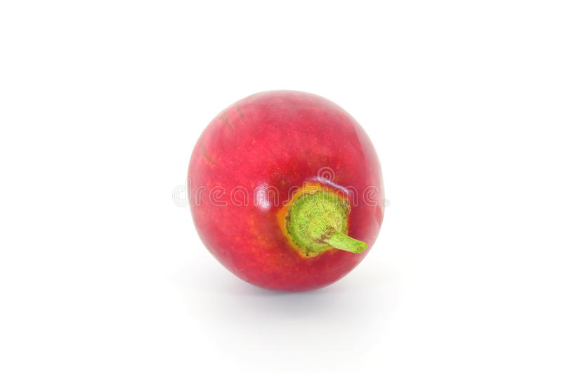 Download Tamarillo end stock image. Image of fresh, nutritious - 15883495