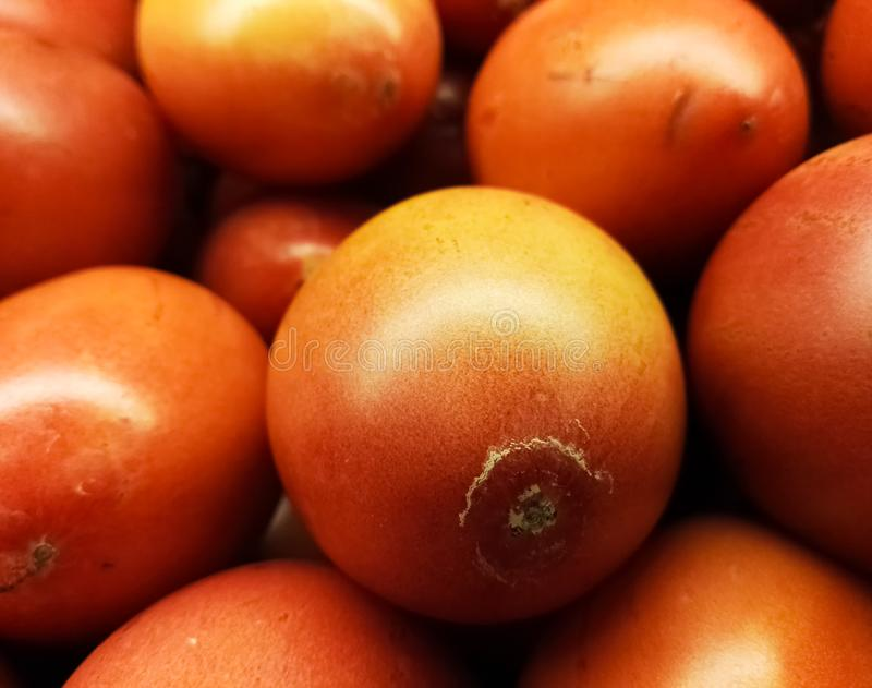 Tamarillo oder Baumtomate, essbare tropische exotische Frucht, populär in Südamerika stockfoto