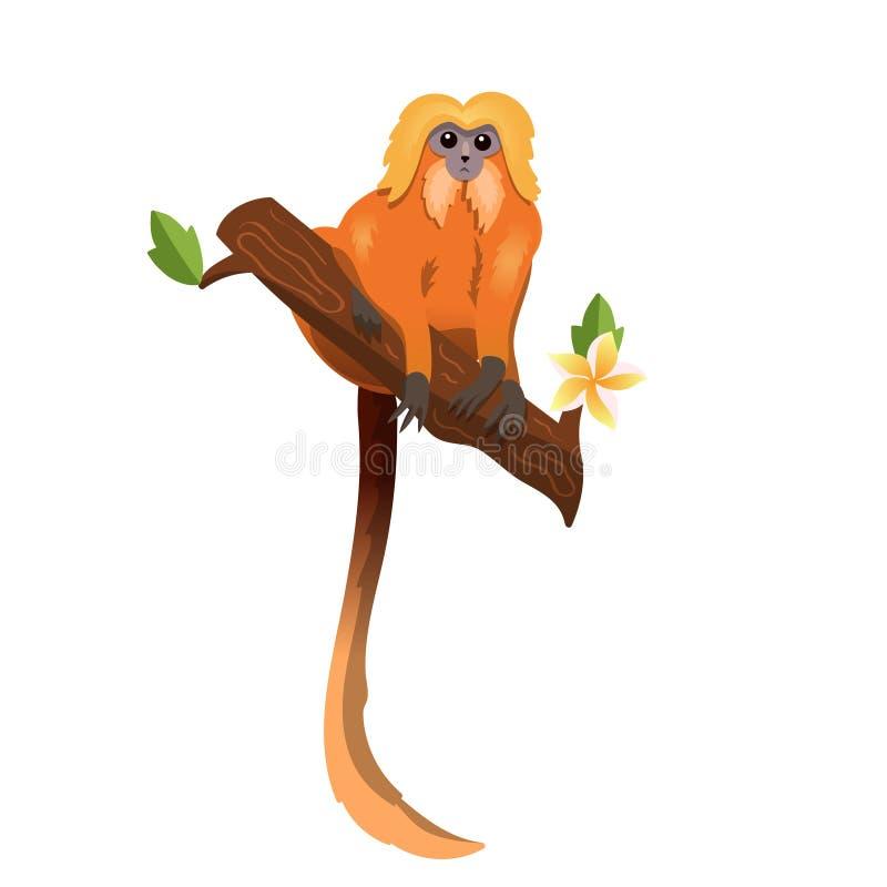 Tamarin льва обезьяны золотой на изображении вектора plumeria изолированном ветвью иллюстрация штока