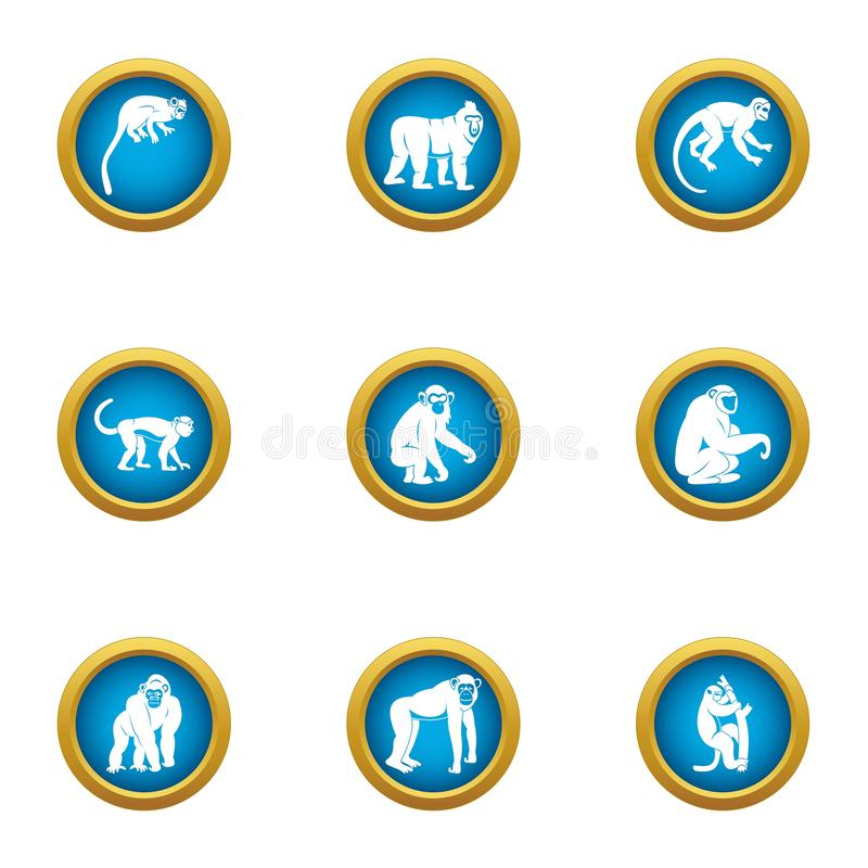 Tamarin icons set, flat style. Tamarin icons set. Flat set of 9 tamarin vector icons for web isolated on white background stock illustration