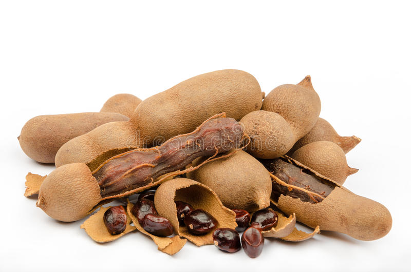 Tamarind (Tamarindus indica) royalty free stock photo