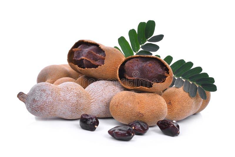 Tamarinde met blad en zaden, tropisch fruit dat op wit wordt geïsoleerd stock afbeelding