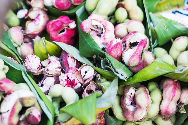 Tamarindo de Manila a árvore camachile, dulce do Pithecolobium, fruto imagens de stock