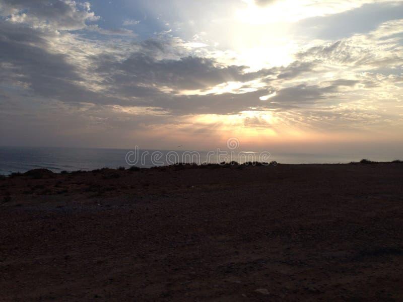 Tamaris plażowy dar bouazza fotografia royalty free