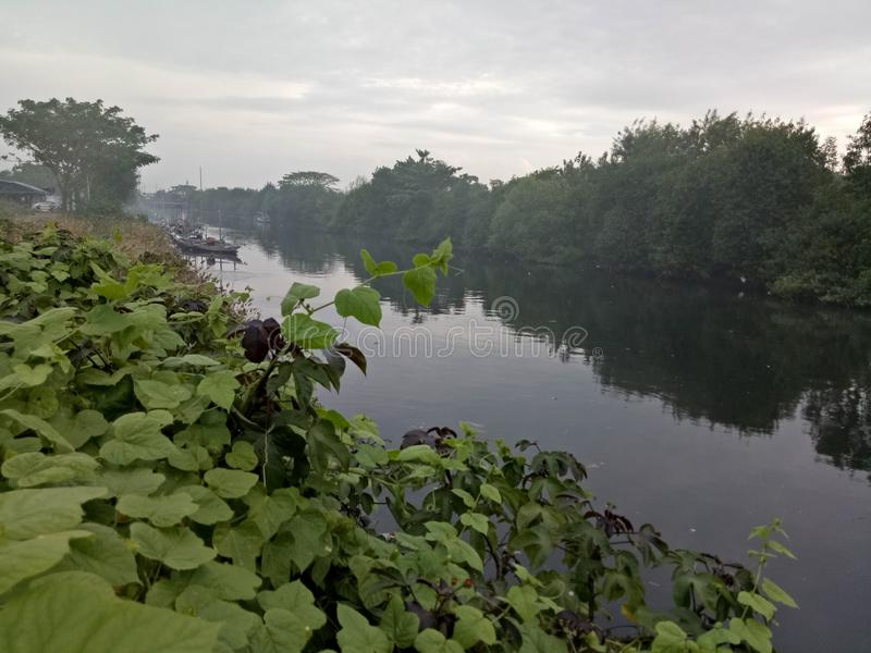 Tambakwedi-Fluss stockfoto