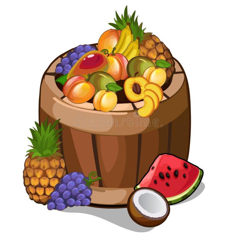 Tambor com frutos tropicais de dar água na boca ilustração royalty free