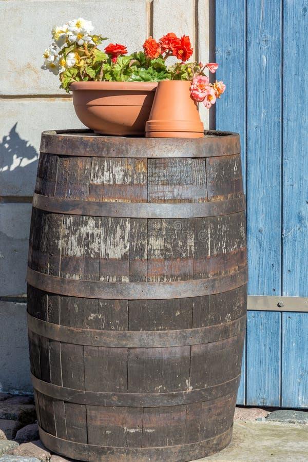 Tambor de vinho como uma decora??o no jardim fotografia de stock