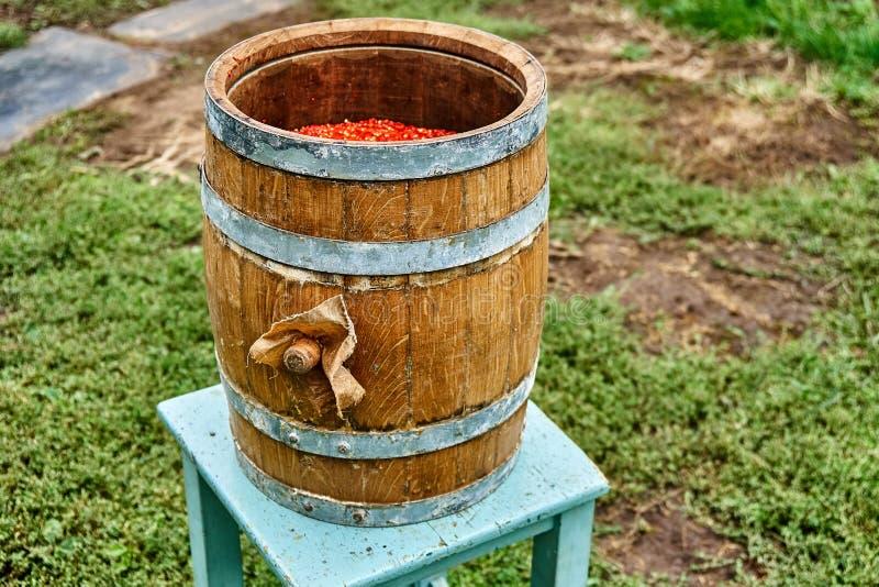 Tambor do carvalho Tambor de madeira aberto enchido com o pimento moído Produção do molho picante fotos de stock royalty free