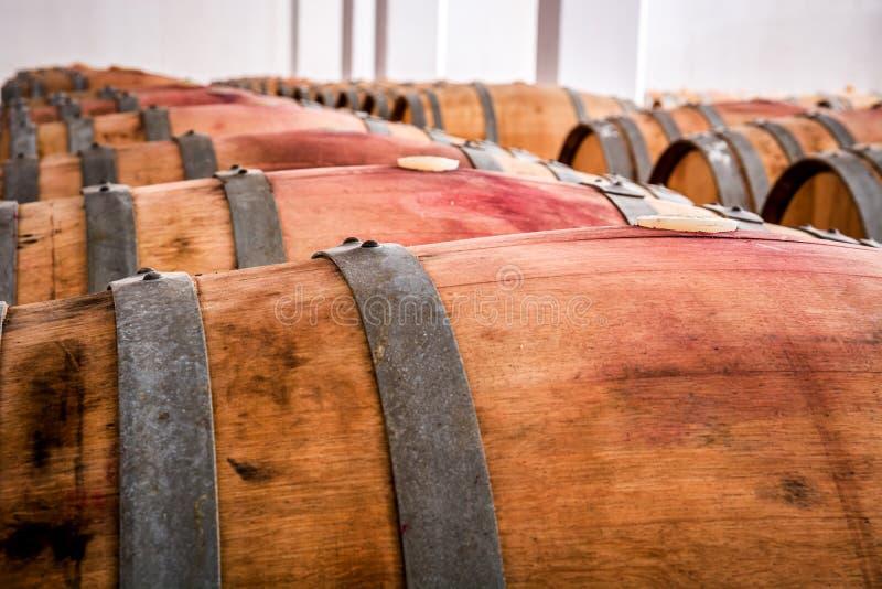 Tambores americanos do carvalho com vinho tinto Adega de vinho tradicional imagens de stock