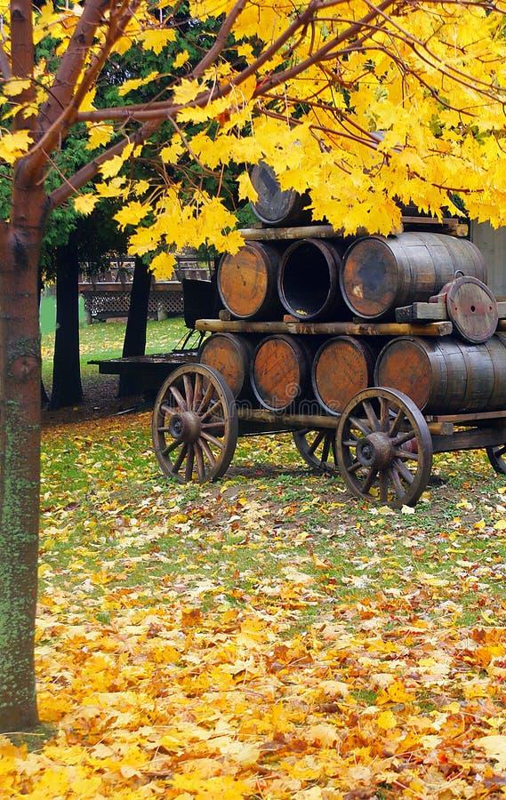 Tambores de cerveja na queda fotos de stock royalty free
