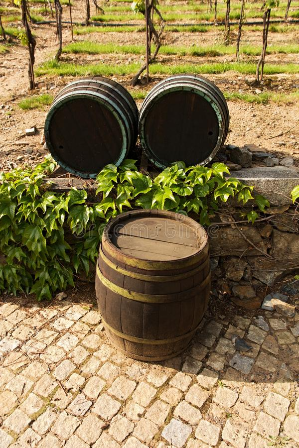 Tambores de madeira para o vinho imagens de stock