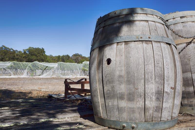 Tambores de vinho da adega imagem de stock