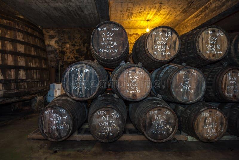 Tambores de vinho do Porto na adega, Vila Nova de Gaia, Porto, Portugal imagens de stock