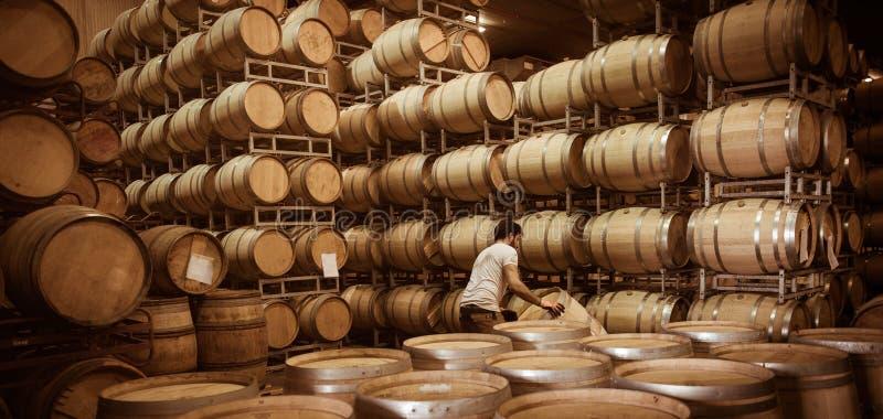 Tambores de vinho empilhados na adega, vinhedo do Bordéus imagens de stock royalty free