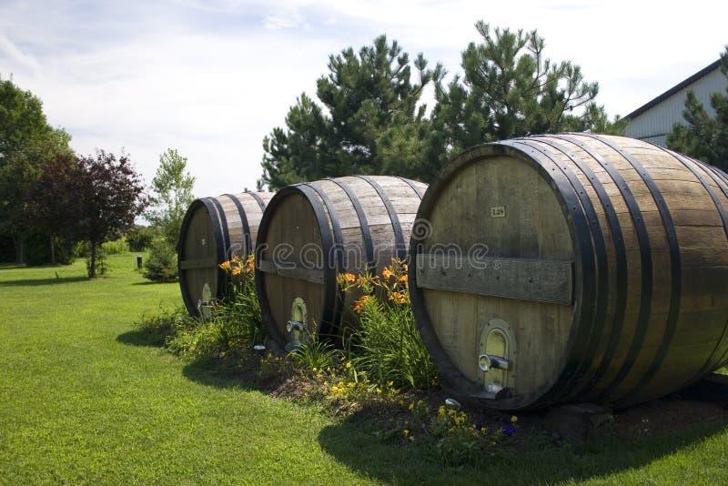 Tambores de vinho grandes fotografia de stock royalty free