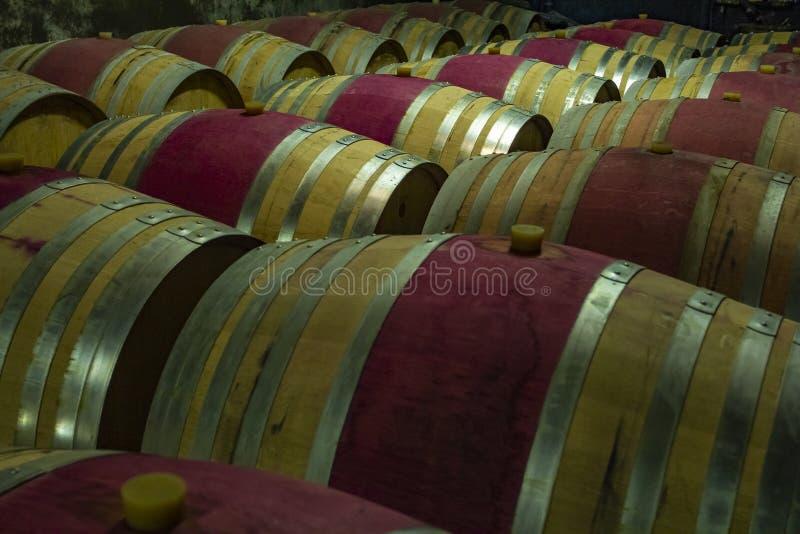 Tambores de vinho de madeira em um porão fotos de stock royalty free