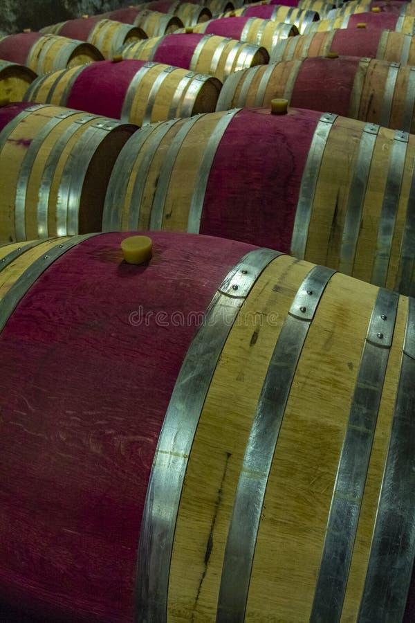 Tambores de vinho de madeira em um porão imagem de stock