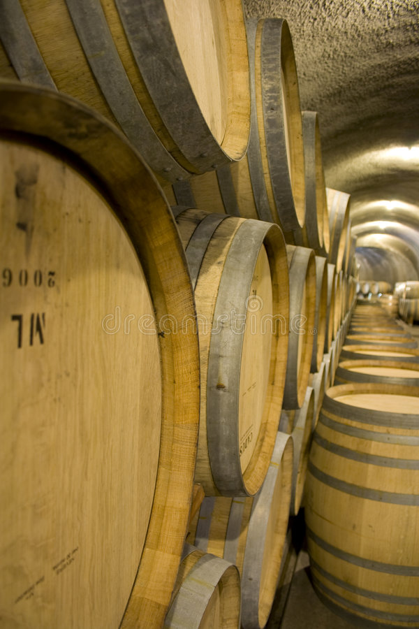Tambores de vinho na adega de vinho foto de stock