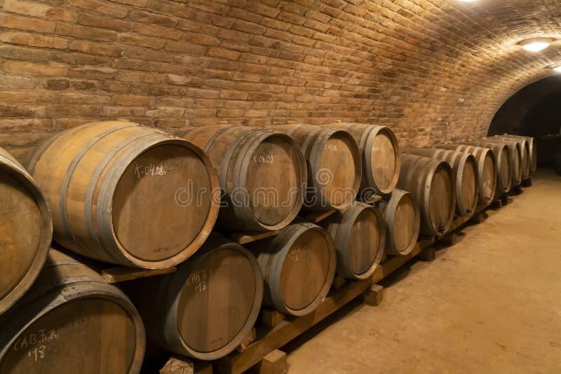tambores de vinho na adega, Szekszard, Hungria fotografia de stock royalty free