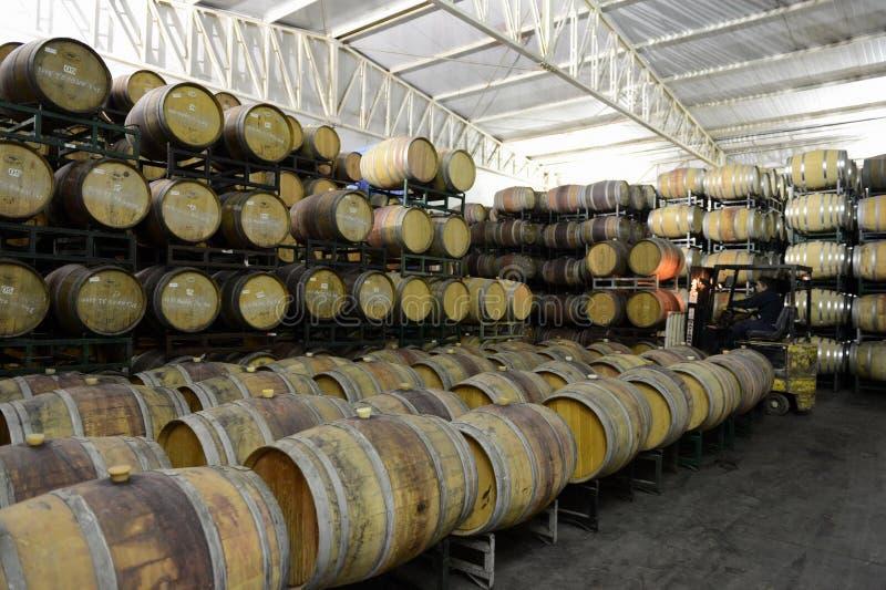 Tambores de vinho na adega Viu Manent imagens de stock royalty free