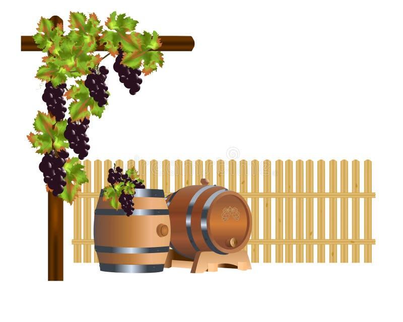 Tambores de vinho no pátio ilustração do vetor
