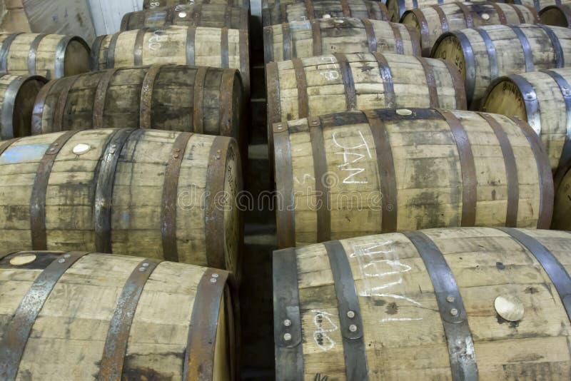 Tambores do carvalho na destilaria do bourbon fotografia de stock