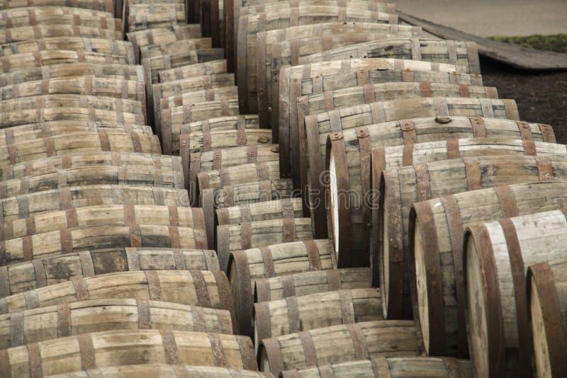 Tambores do uísque que esperam o reenchimento foto de stock