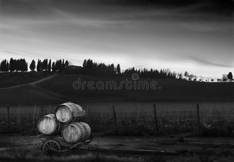 Tambores no campo de tuscan fotografia de stock