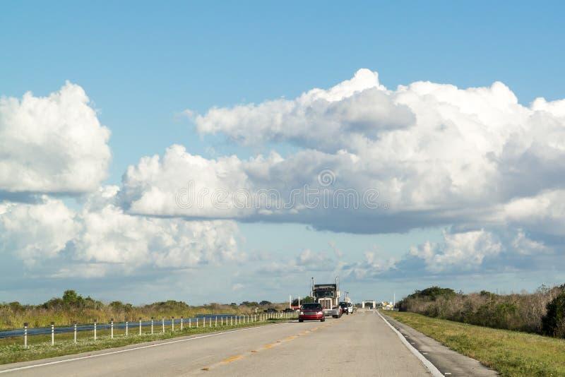 Tamiami ślad w błotach, Floryda, usa fotografia royalty free