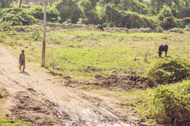 Tamil Nadu, Indien, am 31. Januar 2018: Indische Landschaft lizenzfreie stockbilder