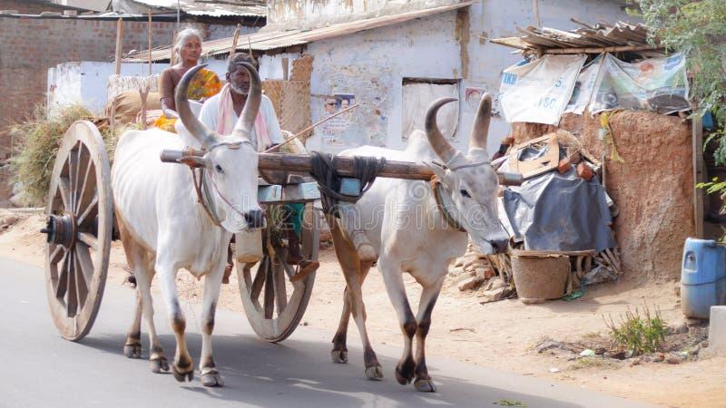 Tamilnadu-Dorfbewohner stockfotografie
