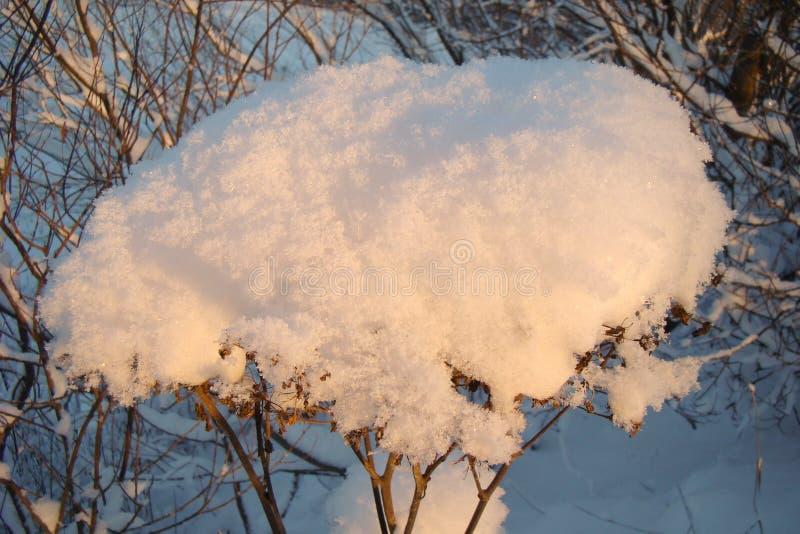 Tampão branco da neve foto de stock royalty free