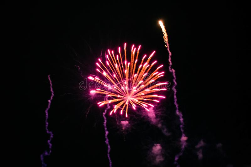 Colorful fireworks in Summer Nights 14 royalty free stock images