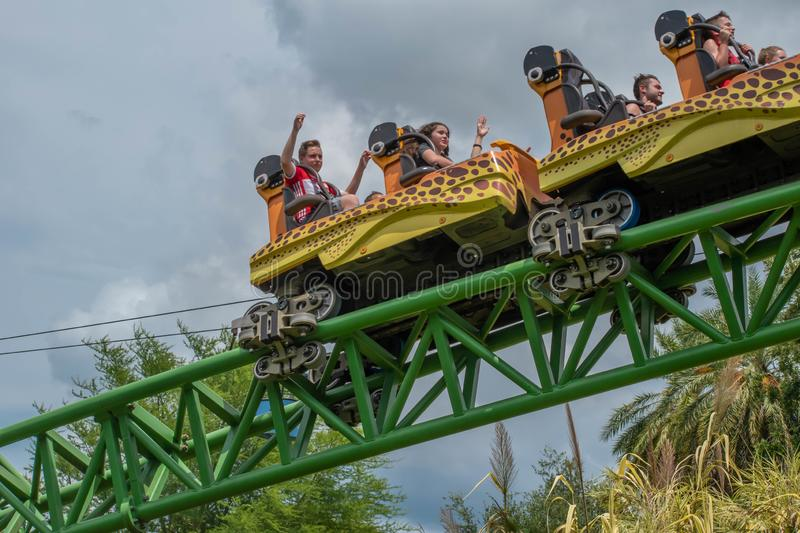 People enjoying terrific Cheetah Hunt rollercoaster , during last summer vacation 49. Tampa Bay, Florida. August 08, 2019. People enjoying terrific Cheetah Hunt stock photo