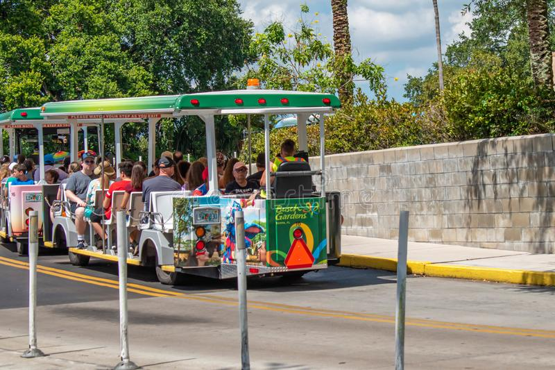 Trams used to transport visitors between the parking lot and the entrance at Busch Gardens stock photo