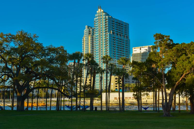 Plant Park and skycrapers on blue sky background in downtown area  1. Tampa Bay, Florida. March 02, 2019. Plant Park and skycrapers on blue sky background in stock photos