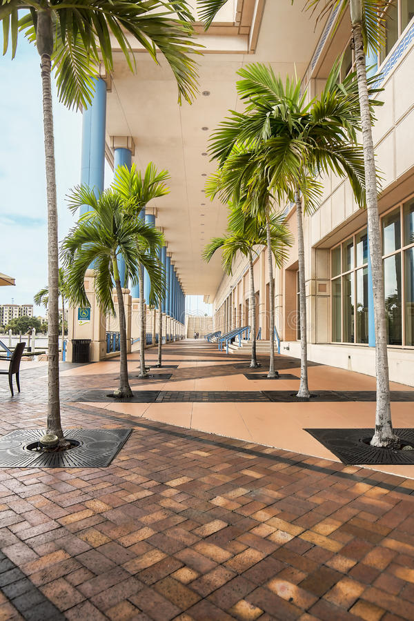 Download Tampa Convention Center editorial stock image. Image of travel - 58722544