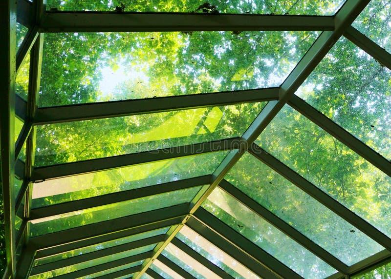 Tampa de vidro da passagem com árvores fotos de stock