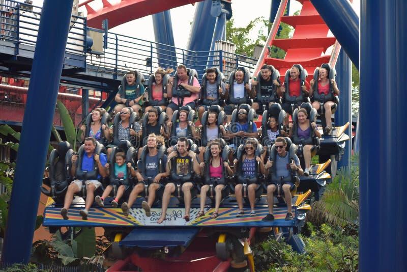 Tampa, Florida 6 de outubro de 2018 Close-up de povos entusiasmados, no fim de uma grande descida no roller coaster de Sheikra em fotografia de stock