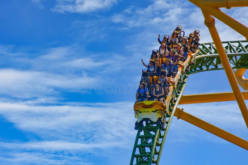 Cheetah Hunt Is A Thrilling Triple-launch Roller Coaster At Bush