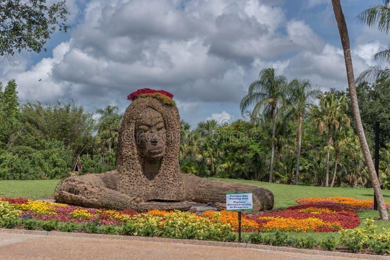 TAMPA FLORIDA - MAJ 05, 2015: Blommaprydnad i Busch trädgårdar Tampa Bay Florida royaltyfri foto