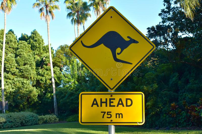 Kangaroo sign on green forest and palm trees background at Bush Gardens Tampa Bay . Tampa, Florida. October 25, 2018 Kangaroo sign on green forest and palm stock photos