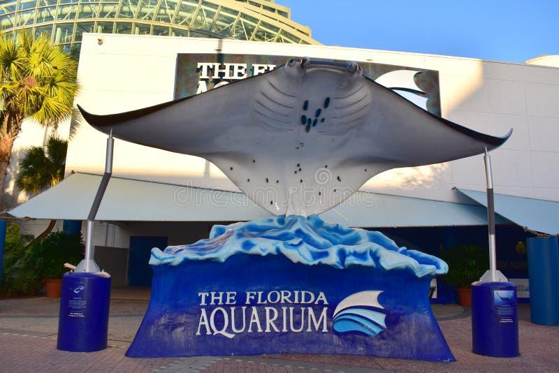 Tampa, Floryda Styczeń 07, 2016: - usa - Floryda akwarium Tampa obrazy royalty free