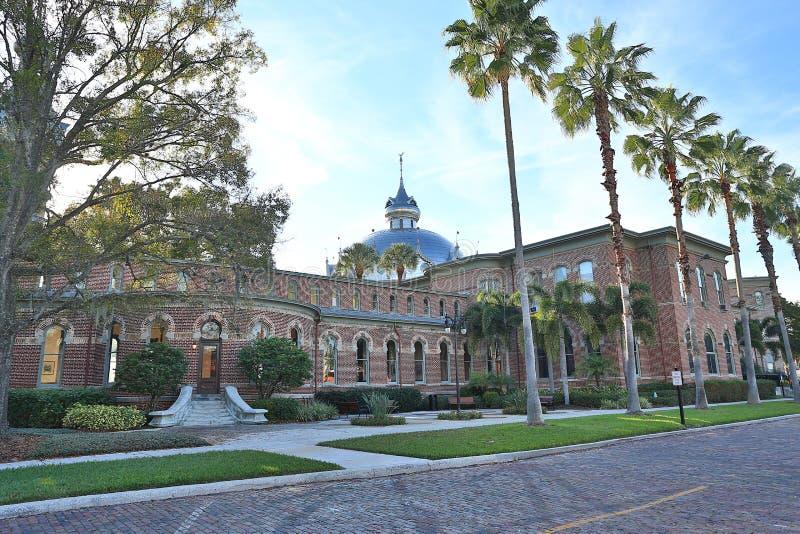 Tampa Henry i uniwersyteta b rośliny muzeum obraz stock